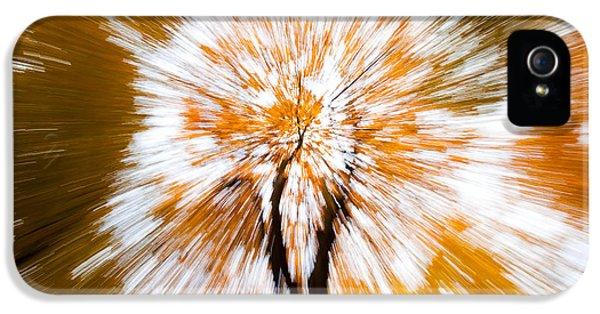 Autumn Explosion IPhone 5 Case