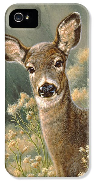 Autumn Fawn-blacktail IPhone 5 / 5s Case by Paul Krapf