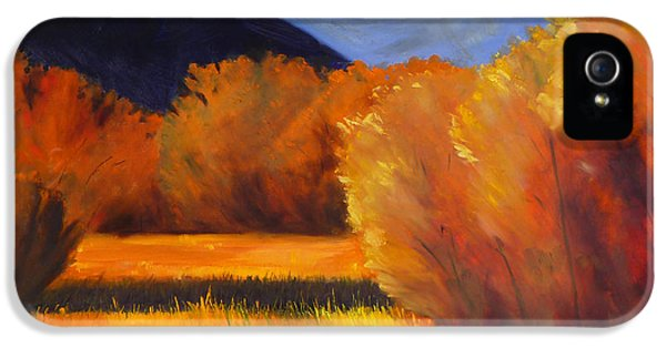Autumn Field IPhone 5 Case