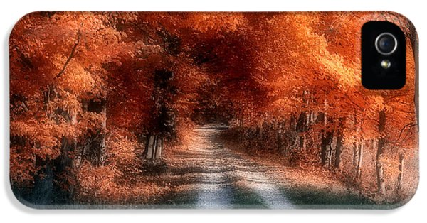 Autumn Lane IPhone 5 Case by Tom Mc Nemar