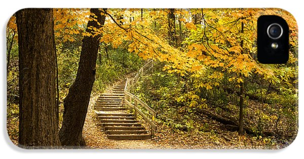 Autumn Stairs IPhone 5 Case by Scott Norris