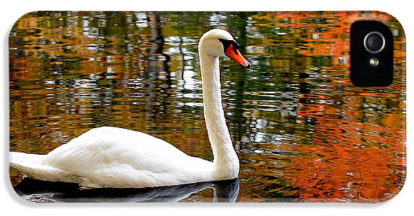 Autumn Swan IPhone 5 / 5s Case by Lourry Legarde