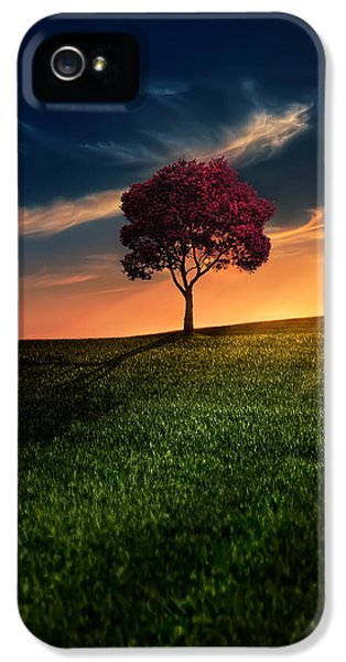 iPhone 5 Case - Awesome Solitude by Bess Hamiti
