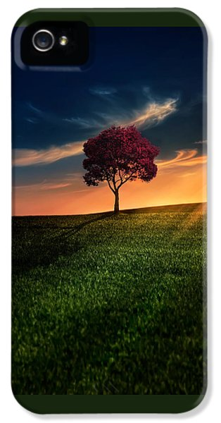 Awesome Solitude IPhone 5 Case by Bess Hamiti