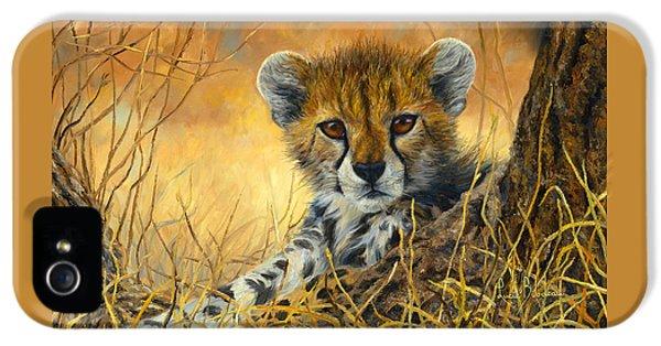 Baby Cheetah  IPhone 5 Case