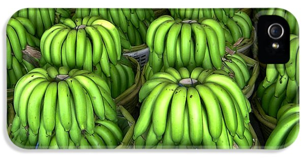 Banana Bunch Gathering IPhone 5 Case by Douglas Barnett