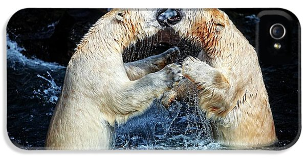 Bear iPhone 5 Case - Battle & Kisses .... by Antje Wenner-braun
