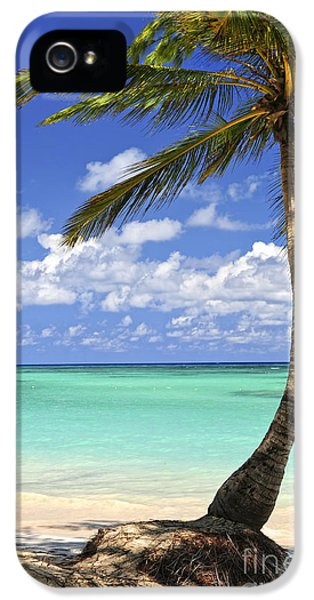 Beach Of A Tropical Island IPhone 5 Case by Elena Elisseeva