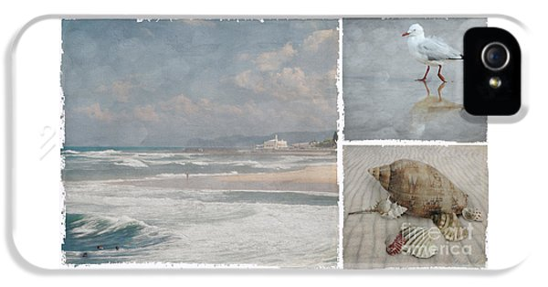 Beach Triptych 1 IPhone 5 Case by Linda Lees