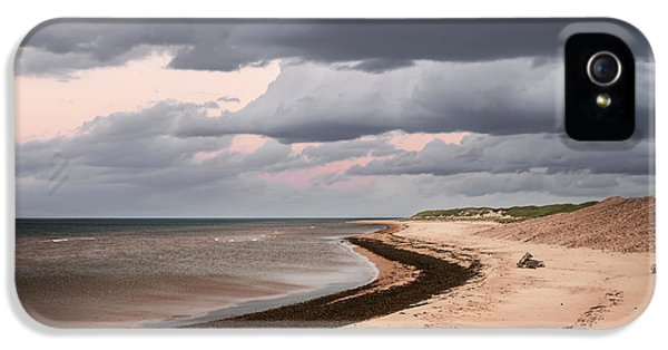 Beach View With Storm Clouds IPhone 5 Case by Elena Elisseeva