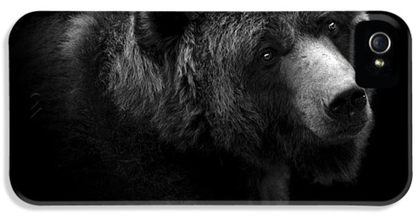 Portrait Of Bear In Black And White IPhone 5 Case