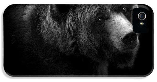 Portrait Of Bear In Black And White IPhone 5 Case by Lukas Holas