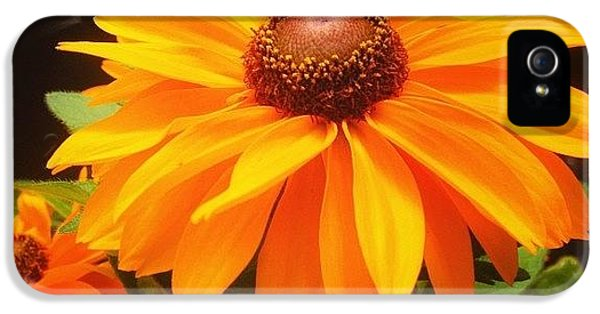 Beautiful iPhone 5 Case - Beautiful Flower #iphone5 #instagram by Scott Pellegrin