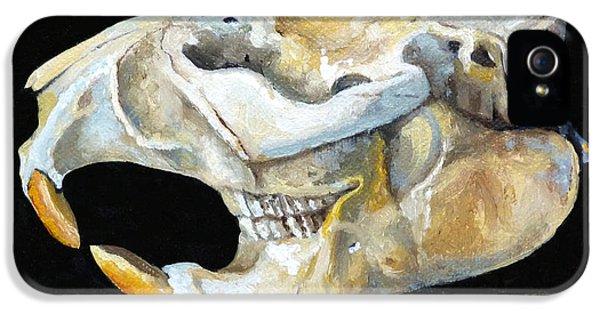 Beaver Skull 1 IPhone 5 Case