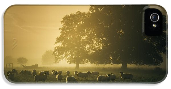 Before Dawn Gathering IPhone 5 Case by Chris Fletcher