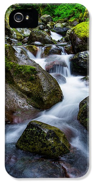 Below Rainier IPhone 5 Case by Chad Dutson