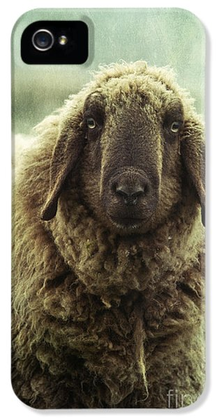 Sheep iPhone 5 Case - Besch Da Pader by Priska Wettstein
