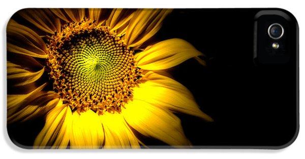 Between Here And There IPhone 5 Case by Bob Orsillo