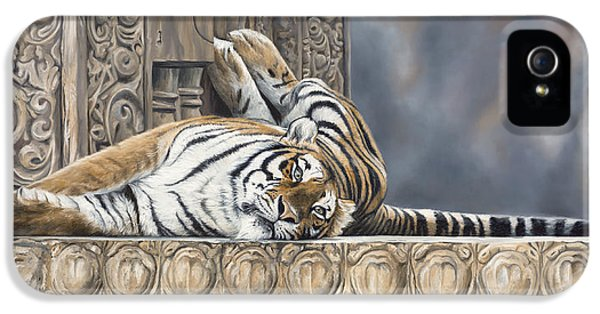 Big Cat IPhone 5 / 5s Case by Lucie Bilodeau
