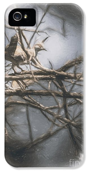 Bird From Woodslost Way IPhone 5 / 5s Case by Jorgo Photography - Wall Art Gallery