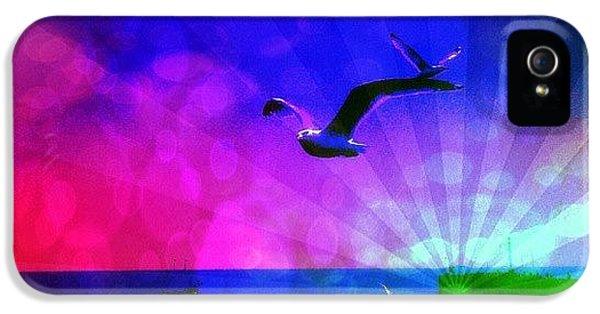 Edit iPhone 5 Case - Birds by Chris Drake