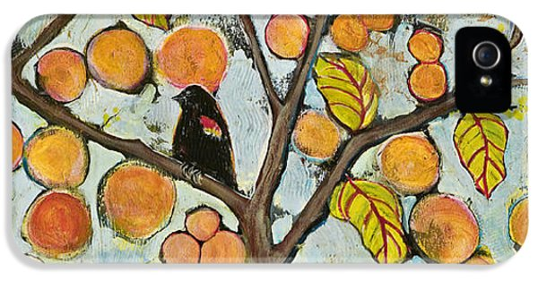 Birds In Paris Landscape IPhone 5 / 5s Case by Blenda Studio