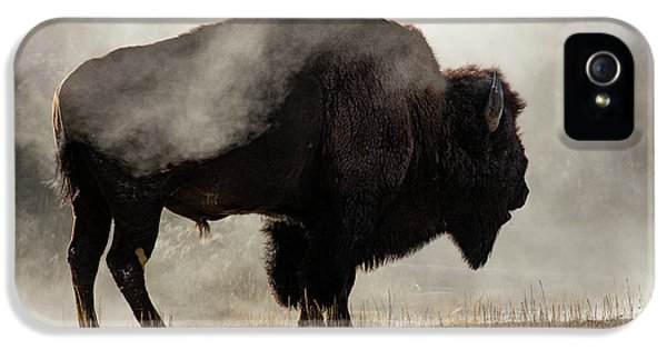 Bison In Mist, Upper Geyser Basin IPhone 5 Case