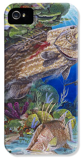 Black Grouper Hole IPhone 5 Case