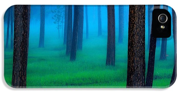 Weather iPhone 5 Case - The Black Hills Forest by Kadek Susanto