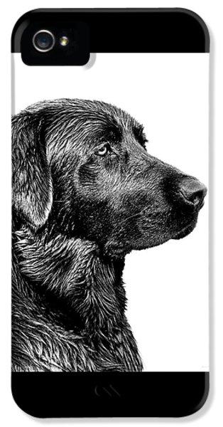Dog iPhone 5 Case - Black Labrador Retriever Dog Monochrome by Jennie Marie Schell
