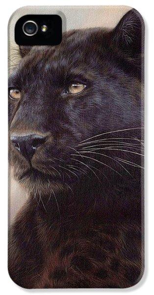 Black Leopard Painting IPhone 5 Case by Rachel Stribbling