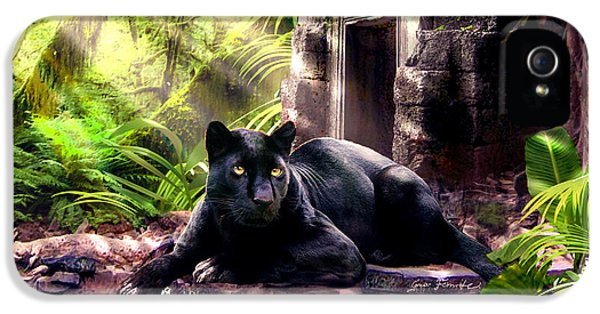 Black Panther Custodian Of Ancient Temple Ruins  IPhone 5 / 5s Case by Regina Femrite