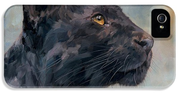 Panther iPhone 5 Case - Black Panther by David Stribbling