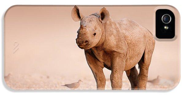 Dove iPhone 5 Case - Black Rhinoceros Baby by Johan Swanepoel