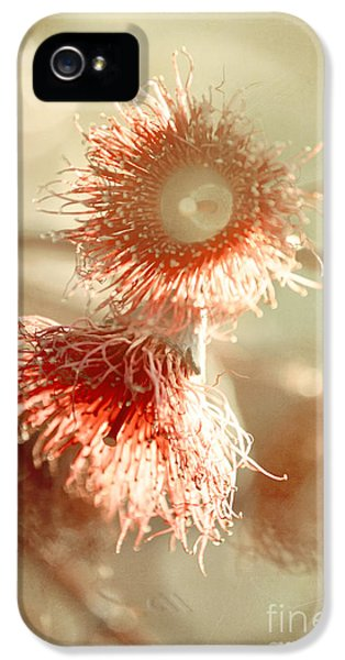 Blossom And Bokeh IPhone 5 Case