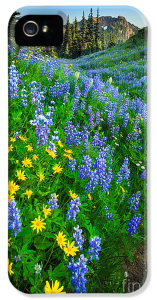 Blue And Yellow Hillside IPhone 5 Case by Inge Johnsson