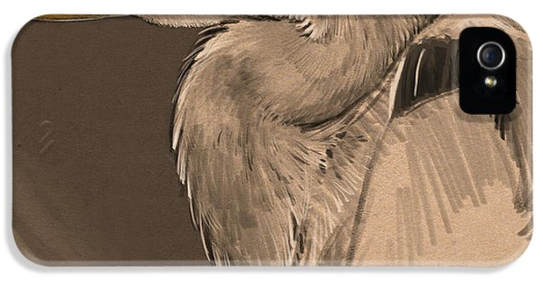 Heron iPhone 5 Case - Blue Heron Sketch by Aaron Blaise