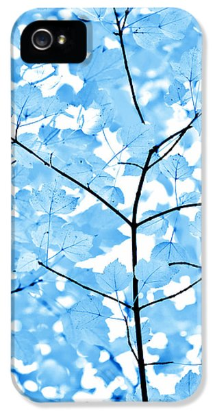 Blue Leaves Melody IPhone 5 Case by Jennie Marie Schell