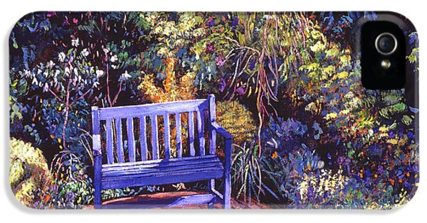 Blue Meeting Chair IPhone 5 Case by David Lloyd Glover