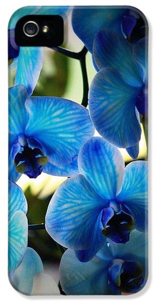 Blue Monday IPhone 5 Case