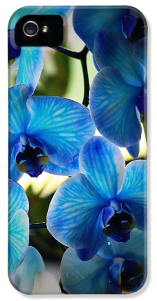 Orchid iPhone 5 Case - Blue Monday by Mandy Shupp