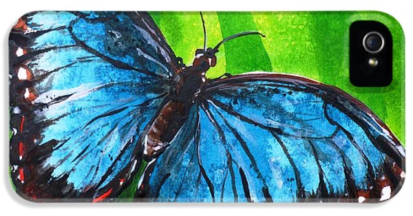 Blue Morpho Butterfly IPhone 5 Case