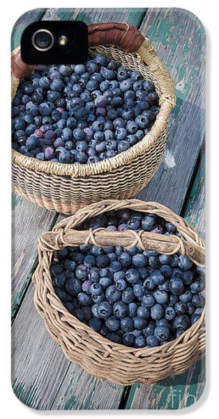 Blueberry Baskets IPhone 5 / 5s Case by Edward Fielding