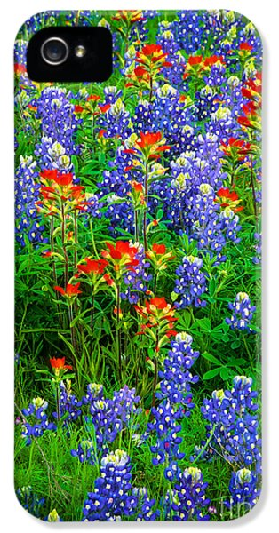 Bluebonnet Patch IPhone 5 Case by Inge Johnsson