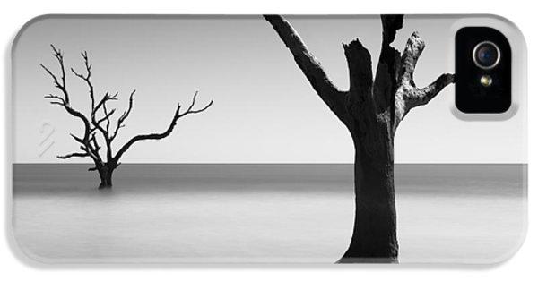 Bull iPhone 5 Case - Boneyard Beach - IIi by Ivo Kerssemakers