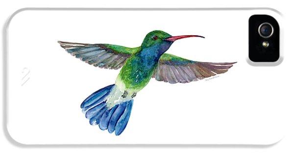Broadbilled Fan Tail Hummingbird IPhone 5 / 5s Case by Amy Kirkpatrick