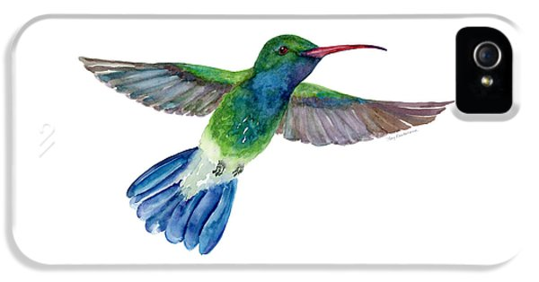 Broadbilled Fan Tail Hummingbird IPhone 5 Case by Amy Kirkpatrick