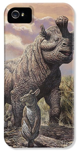 Brontops And Palaeolagus Rabbit IPhone 5 Case