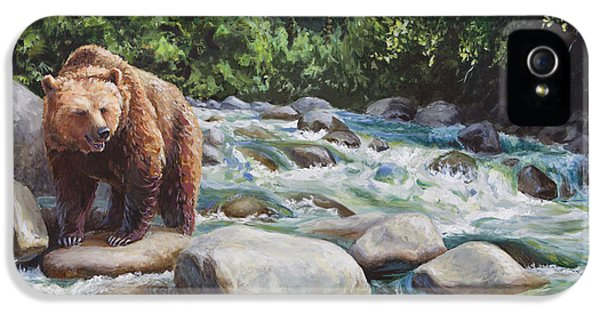 Brown Bear iPhone 5 Case - Brown Bear On The Little Susitna River by Karen Whitworth