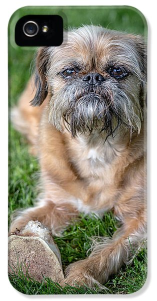 Brussels Griffon IPhone 5 Case by Edward Fielding